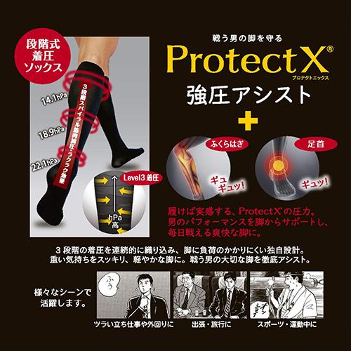 Protect X × 島耕作 着圧ソックス 強圧アシスト